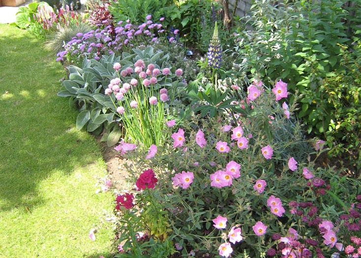 Christine Lees Garden Design A Garden In Bedfordshire