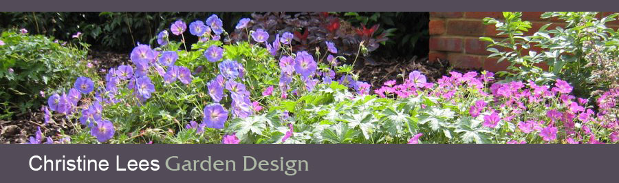 Christine lees garden design contact for Hardy low maintenance perennials