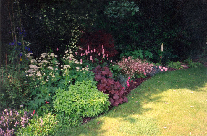 Christine Lees Garden Design Planting Design For Borders And Beds - garden border designs uk