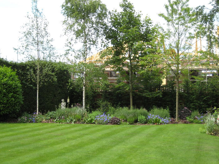 Christine lees garden design a border for a secluded garden for Garden border design